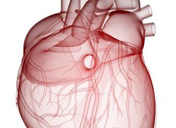Selbst abbaubare Herzimplantate