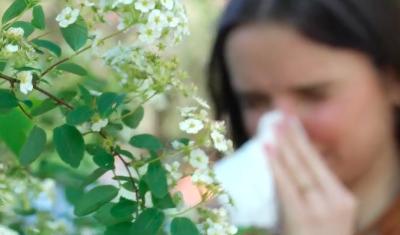 ALK Schweiz – Für ein Leben ohne Allergie